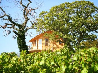 Séjour insolite en Cabane Perchée chez un paysan vigneron dans le vignoble de Château Chalon image 1
