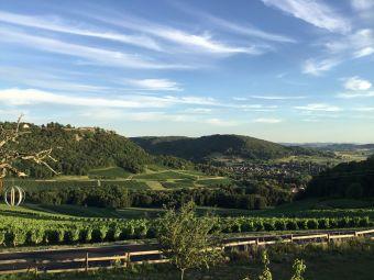 Séjour insolite en Cabane Perchée chez un paysan vigneron dans le vignoble de Château Chalon image 9