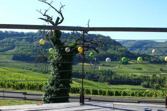 Séjour insolite en Cabane Perchée chez un paysan vigneron dans le vignoble de Château Chalon image 6