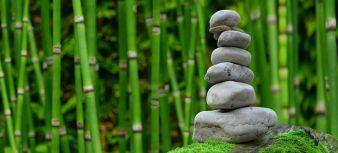 Séance de Shiatsu ou Massage Détente au choix (1h, 1h30 ou 2h00) image 2