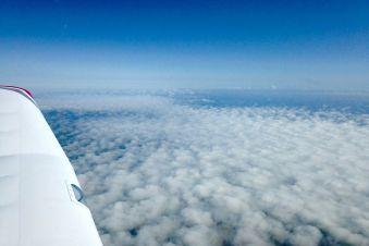 Survol du Mans en avion privé image 1