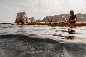 Abonnement annuel loisir (Kayak / Paddle / Kayasurf / Wave ski / Randonnées) image 3