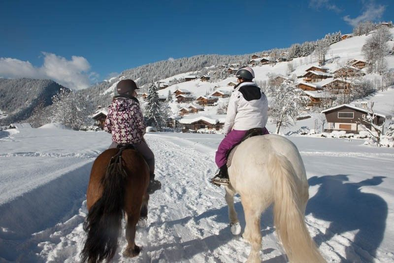 Balade à cheval sur neige image 1