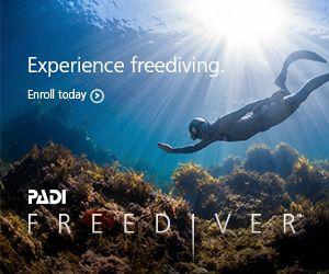 Formation Freediver (Apnée) image 1